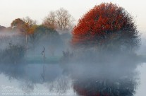 Colours Of A Morning Mist