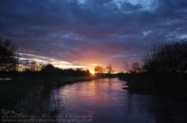 River Frome At Dawn