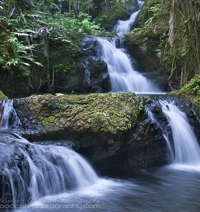 Falls near Onomea Bay