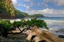 Koki Beach on Maui