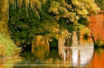 Bridge over the Godalming Canal