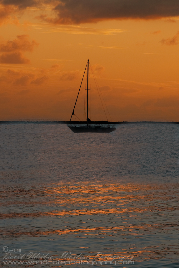 Lone Yachtsman