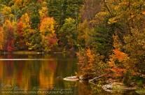 Fall Colours, skirting Nepaug Reservoir, Connecticut