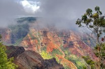 Cloud and mist beginning to quickly fill Waimea Canyon