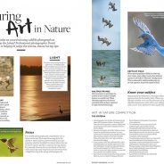 """Art In Nature"" Photography Competition"