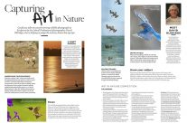 """""""Art In Nature"""" Photography Competition"""
